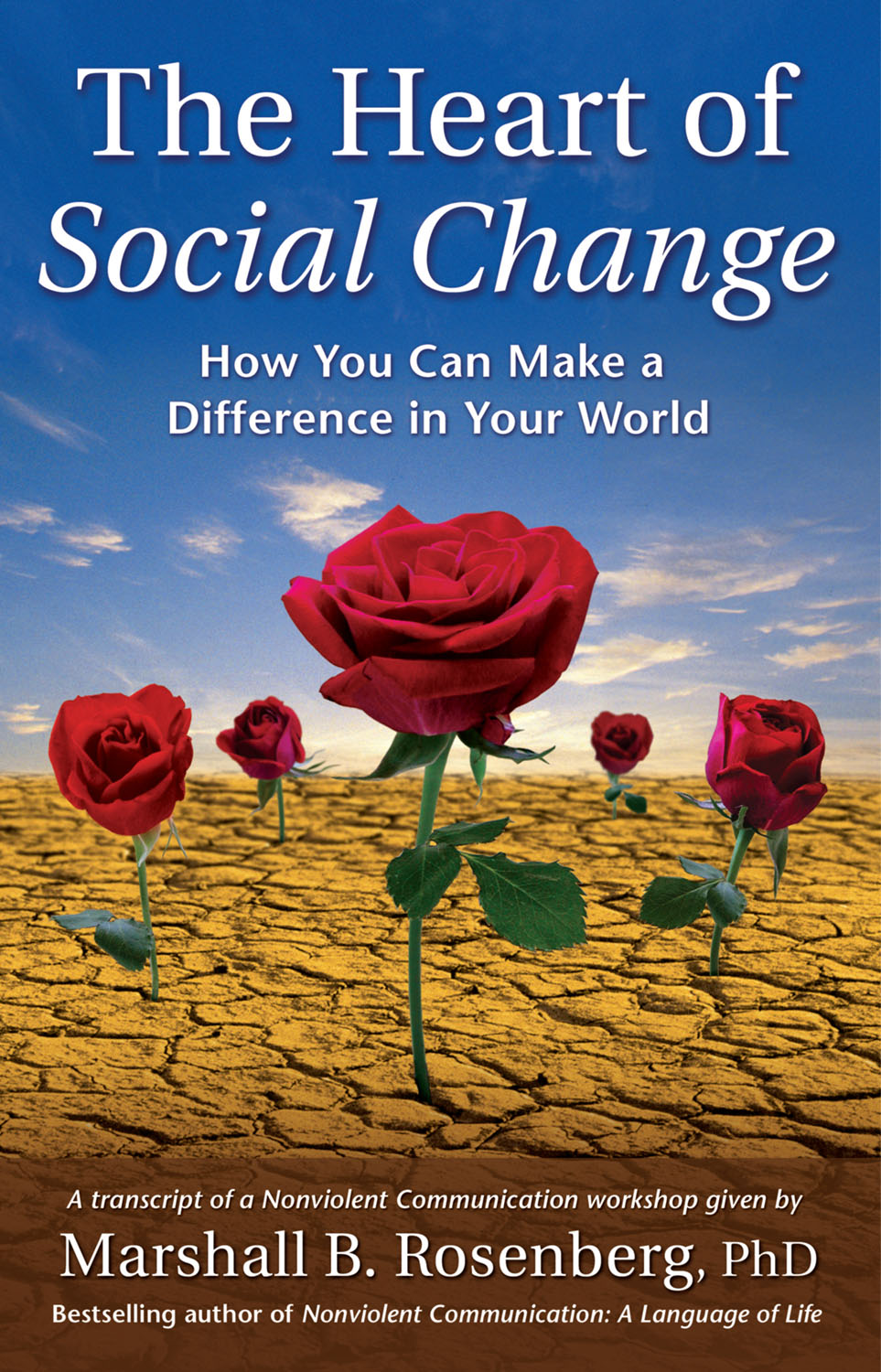 The Heart of Social Change Book Cover