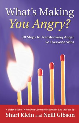 Whats Making You Angry front cover